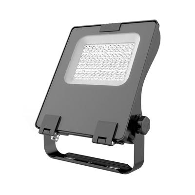 Filo Light Fixture