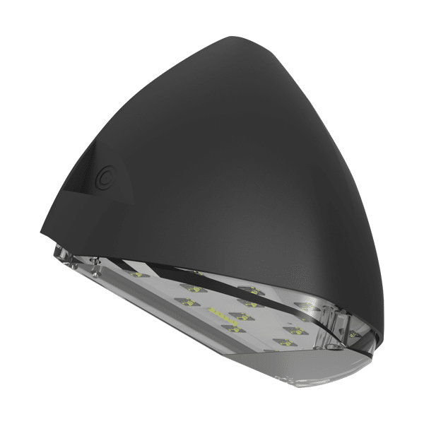 Finn Light Fixture